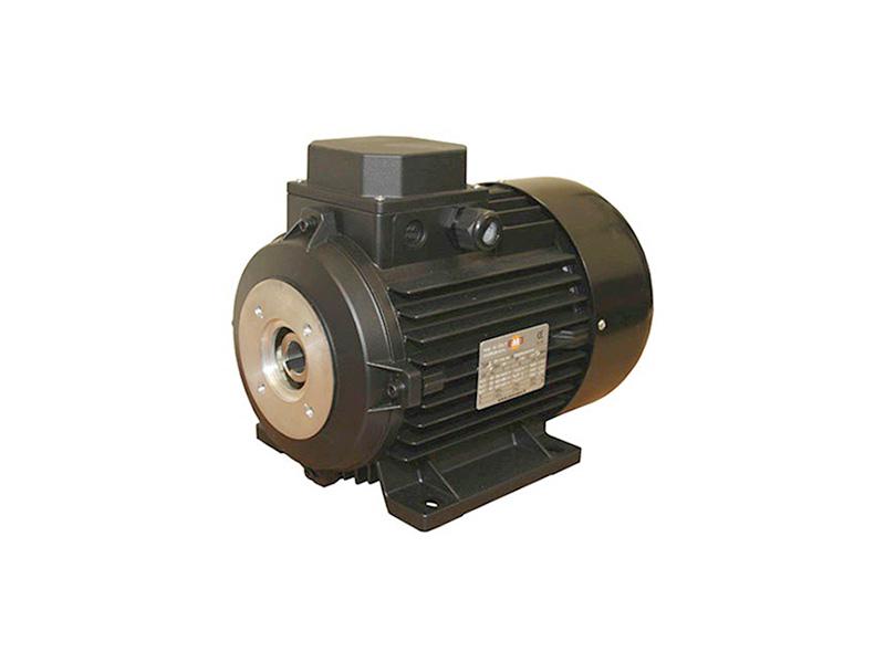 Электродвигатель Electrics Motors Europe 6,3 кВт, 3 фазы (п/вал) 1450 об/мин