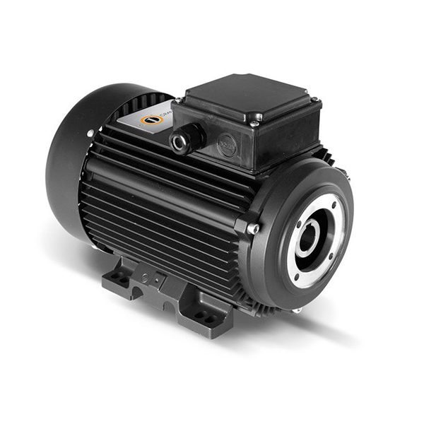 Электродвигатель Electrics Motors Europe 6,3 кВт, 3 фазы (п/вал)1450 об/мин+Termic