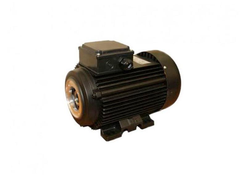 Электродвигатель Electrics Motors Europe 7,5 кВт (полый вал) с термодатчиком