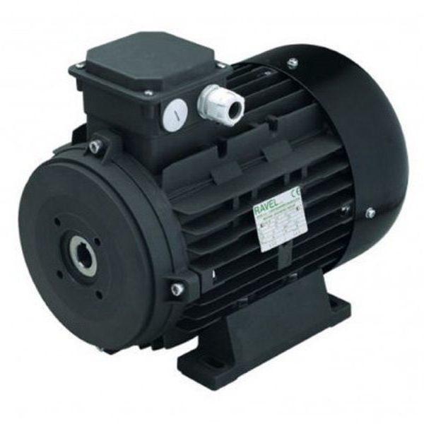 Электродвигатель Ravel H160 S HP 20 4P MA AC KW 15 4P