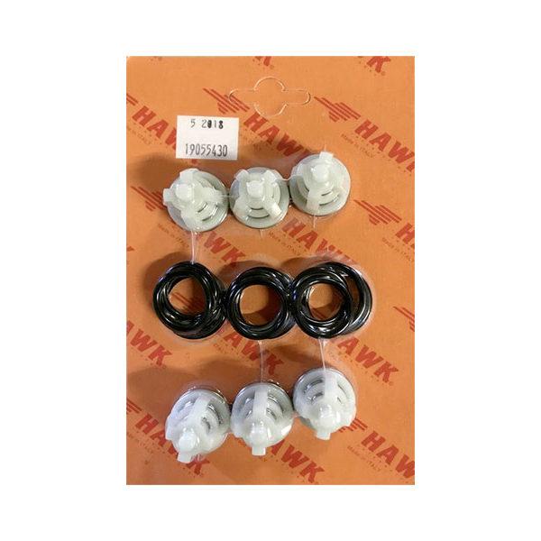 Комплект клапанов насоса 1.905-543.0